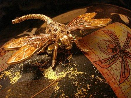 Поймай Золотую стрекозу!